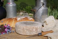 Fromage de Savoie Tomme Fermière - Voir en grand