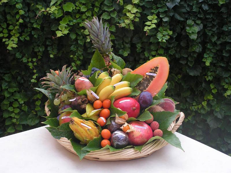 Fruits et l gumes fenouillet - Corbeille de fruits a domicile ...