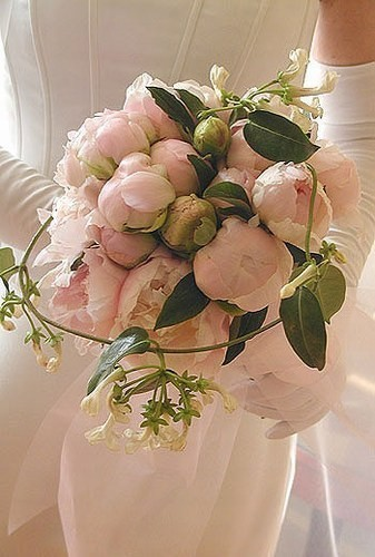 bouquet romantique de pivoines flora valentin. Black Bedroom Furniture Sets. Home Design Ideas