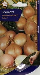 echalote ambition hybride f1 gondian graine semence potager sachet - Voir en grand