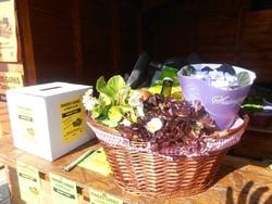 Sur le marché de La Charité sur Loire'automne