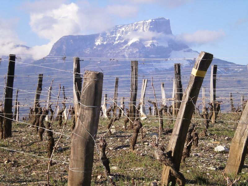 SAVOIE MASSIF DE LA CHARTREUSE : COL DU GRANIER - Voir en grand