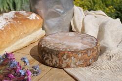 Fromage de Savoie Grataron - Voir en grand