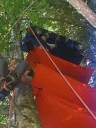 bivouacs dans les arbres - Voir en grand