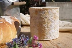 Fromage de Savoie Persillé de Haute Tarentaise - Voir en grand