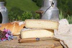 Fromage de Savoie Tome des Bauges - Voir en grand