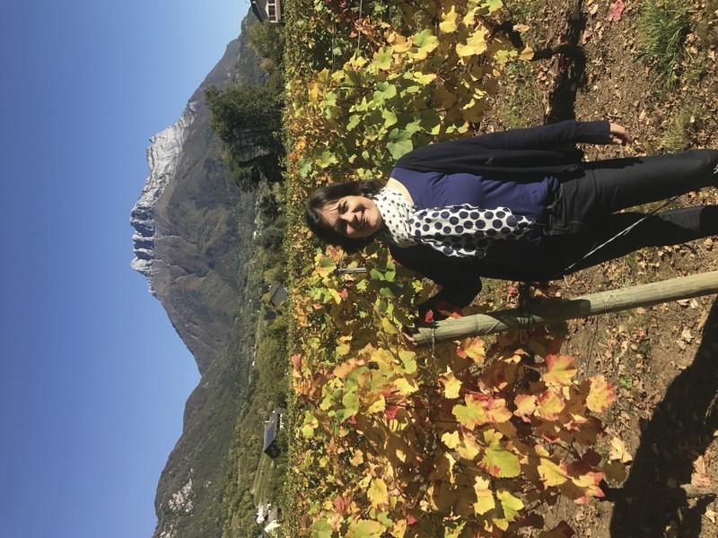 DOMAINE DE MEJANE SAVOIE : ANNE HENRIQUET - Voir en grand