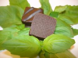 Les ganaches au chocolat du Jardin des plantes - Chocolat ganaches, praliné... - Chocola thé - Voir en grand