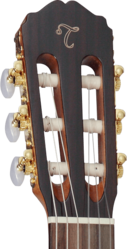 Guitare Classique Takamine GC5CENAT-3 - Voir en grand