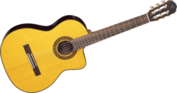 Guitare Classique Takamine GC5CENAT - Voir en grand