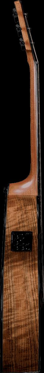 Guitare folk Lâg TS-MH-PE Signature Michel HAUMONT-4 - Voir en grand