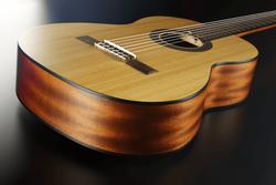 Guitare classique GSM 7 & GAUCHER-2 - Voir en grand