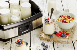 YAOUTIERE FROMAGERE CUISINART