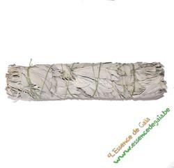 SAUGE BLANCHE 22 CM - ESOTHERISME - Espace Bien Etre - Aimants - Pierres - Produits Naturels - Voir en grand