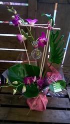 bouquet poche d'eau d'eau orchidee dendro - Voir en grand