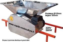 Broyeur à pomme électrique trégros débit 590w 220V chez www.martin-motoculture.fr - Voir en grand