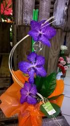 bouquet poche d'eau pipette orchidee vanda - Voir en grand