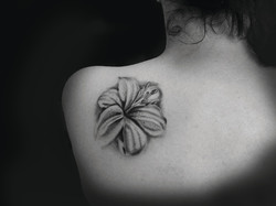 papillon tattoo,www.tattoopictures19.com