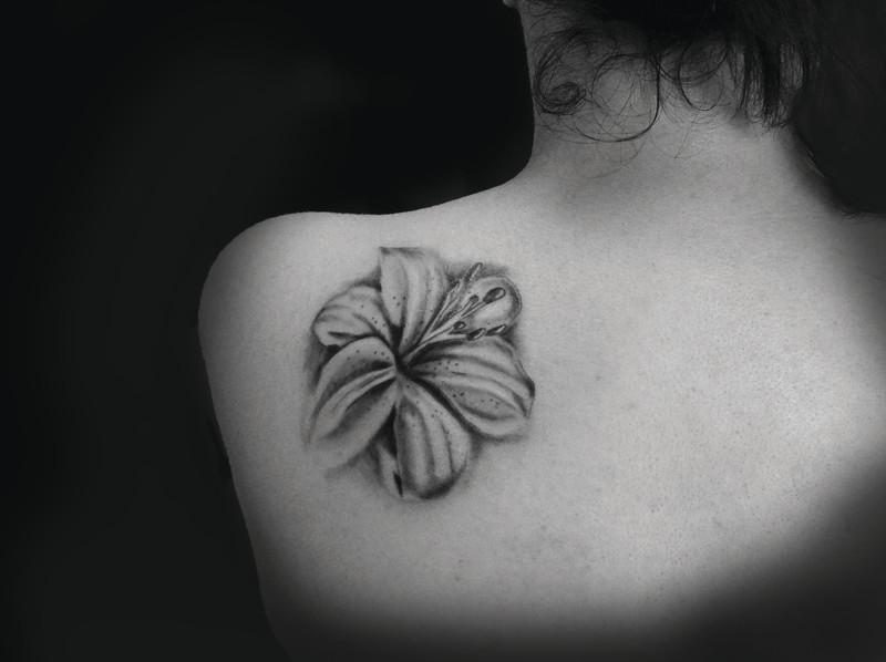 papillon tattoo,www.tattoopictures19.com - Voir en grand