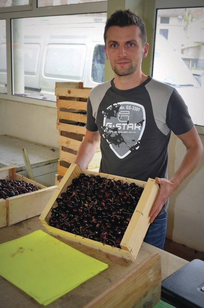 Rollet Cyril - Nos Primeurs / Producteurs de fruits et légumes  - HALLES DE MONTBARD, votre marché alimentaire de proximité - Voir en grand