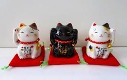 Chat manekineko  - Compotoir du Japon