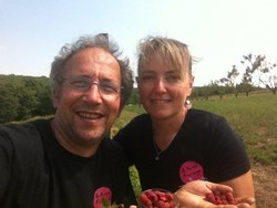 Ferme-Fruirouge-recolte-Framboise - Voir en grand