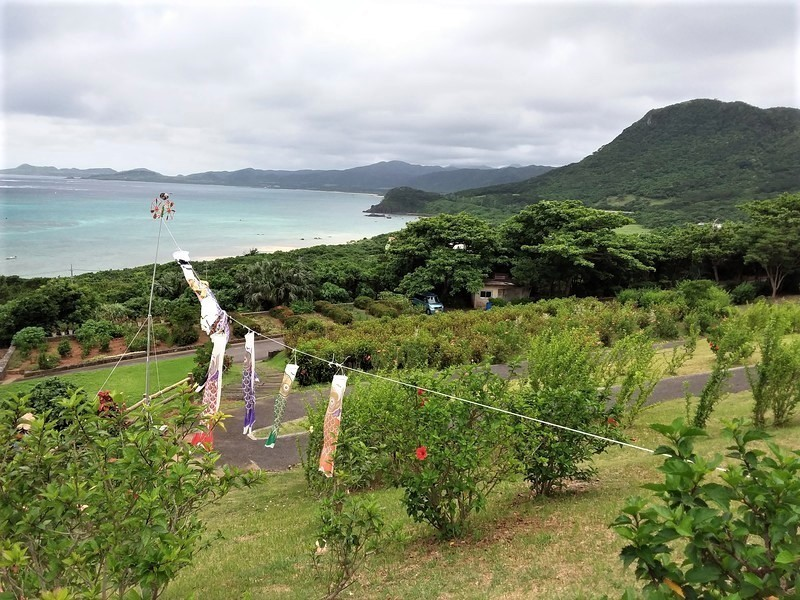koinobori Okinawa - Comptoir du Japon - Voir en grand