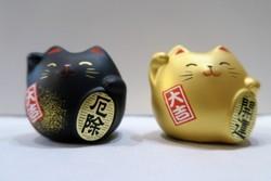 Chat manekineko  - Voir en grand
