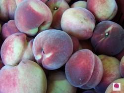 Ferme-Fruirouge-Peches-de-vigne - Voir en grand