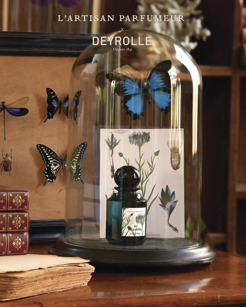 MIRABILIS (collection La Botanique) - Voir en grand