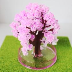 Arbre magique Hanami Sakura felurs de cerisier rose - Comptoir du Japon - Voir en grand