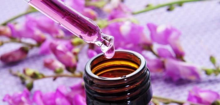 huile essentielle de BOIS DE HO - BIEN ETRE  - MISS TERRE VERTE - Voir en grand