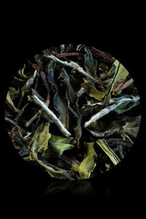 thé blanc - Thé blanc - CALISA :  vente  thés et infusions - Voir en grand
