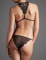 irresistible-attraction-shadow-culotte.3jpg.jpg - Voir en grand