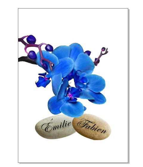 faire part orchidees bleues - Voir en grand