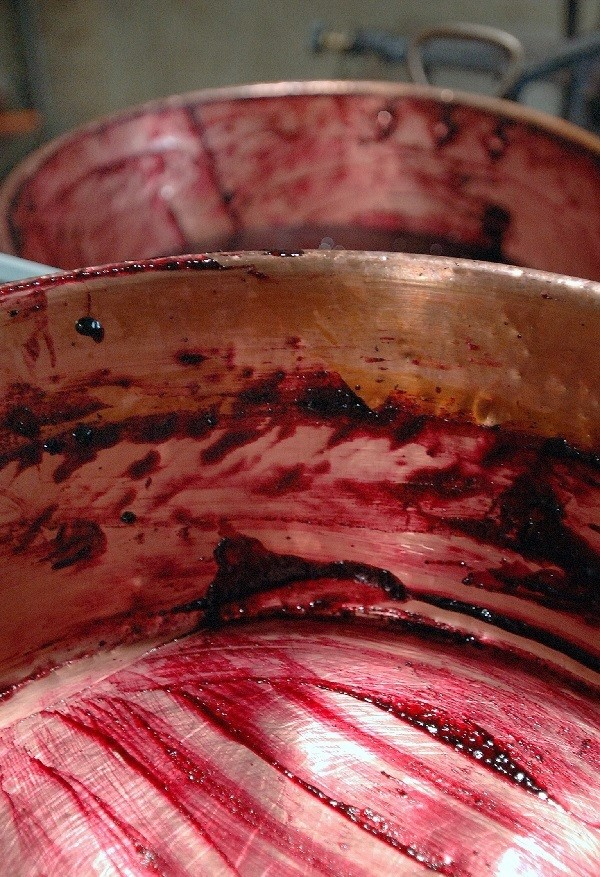 Ferme-Fruirouge-cuisson-cassis (2).jpg - Voir en grand