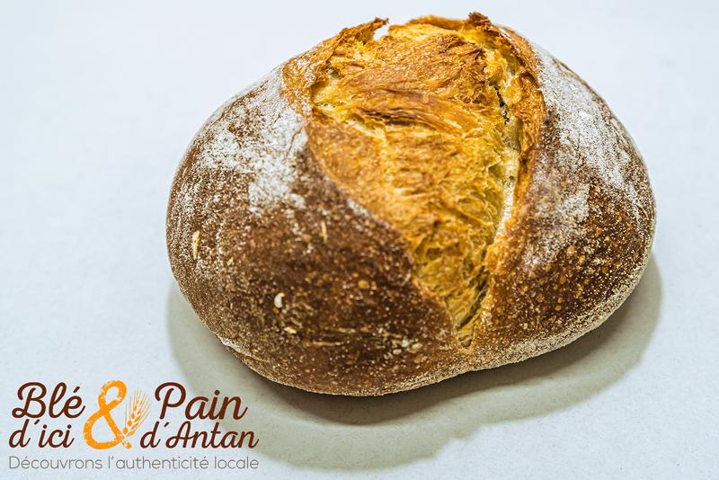 Ciabatta 200g - PAINS - BLÉ D'ICI ET PAIN D'ANTAN - Boulangerie - Voir en grand