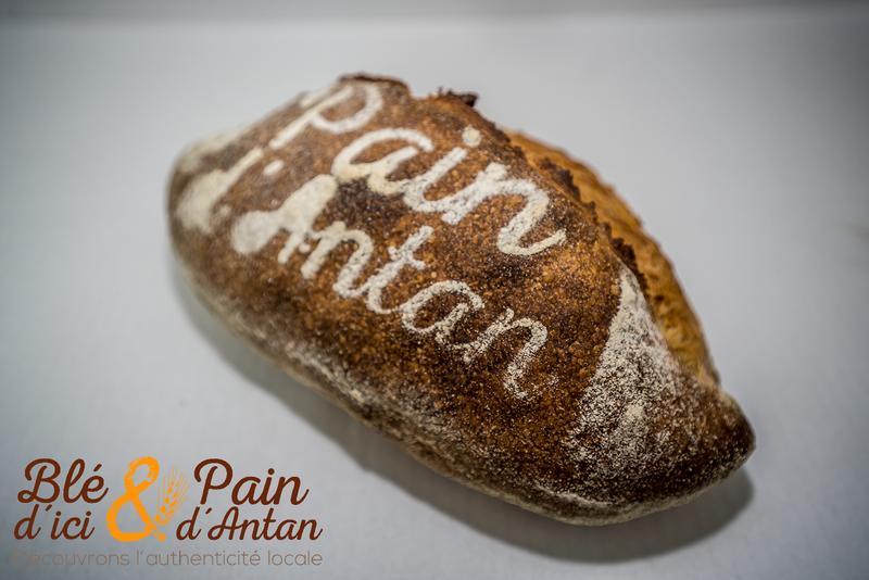 Campagnard 550g - Format BATARD - PAINS - BLÉ D'ICI ET PAIN D'ANTAN - Boulangerie - Voir en grand
