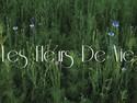 LES FLEURS DE VIC
