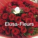 ELUSA-FLEURS