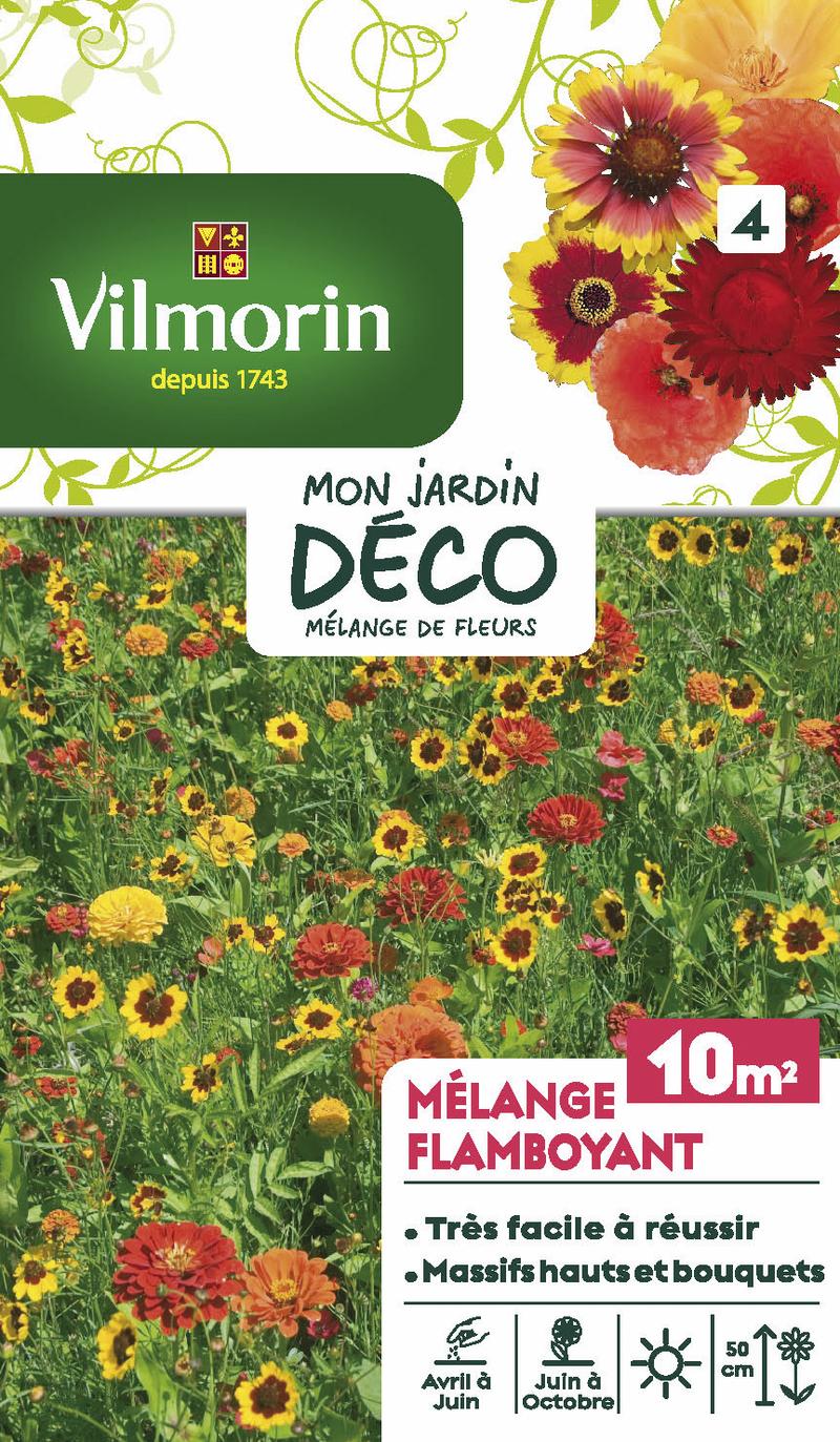 melange flamboyant mon jardin deco vilmorin graine semence melange massif - Voir en grand