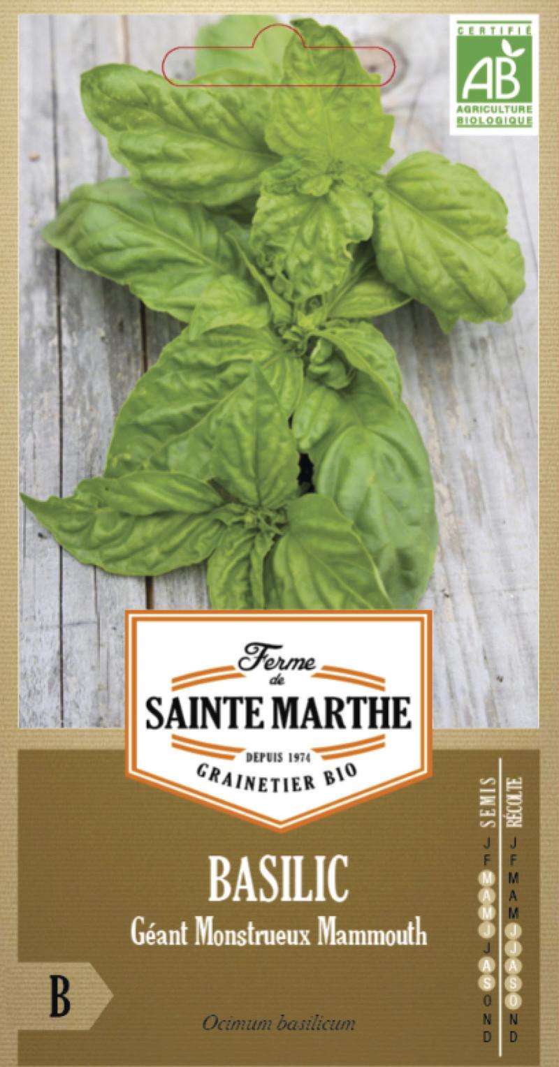 basilic geant monstrueux mammouth bio la ferme de sainte marthe graine semence aromatique sachet - Voir en grand