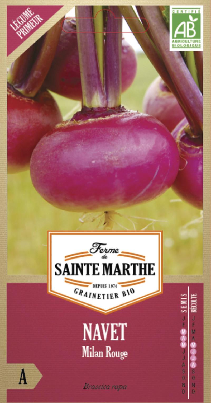 navet milan rouge bio la ferme de sainte marthe graine semence potager sachet semis - Voir en grand