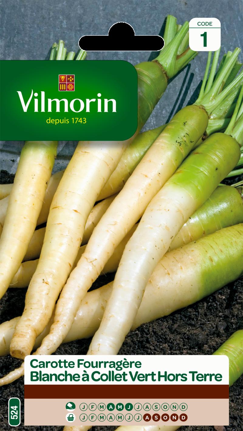 carotte fourragere blanche a collet vert hors terre vilmorin graine semence fourragere sachet semis - Voir en grand