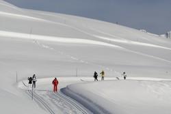 ski_fond_01_laurent_salino.jpg