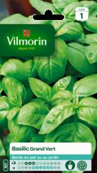 basilic grand vert vilmorin graine semence aromatique potager sachet semis - Voir en grand
