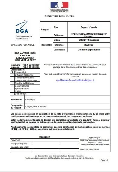 Rapport DGA - Voir en grand