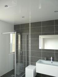 Alpes-Plafond salle de bain - Voir en grand