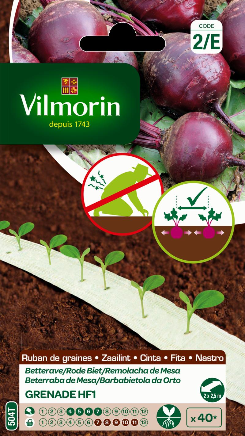 betterave grenade hybride f1 vilmorin graine en ruban semence potager sachet semis - Voir en grand