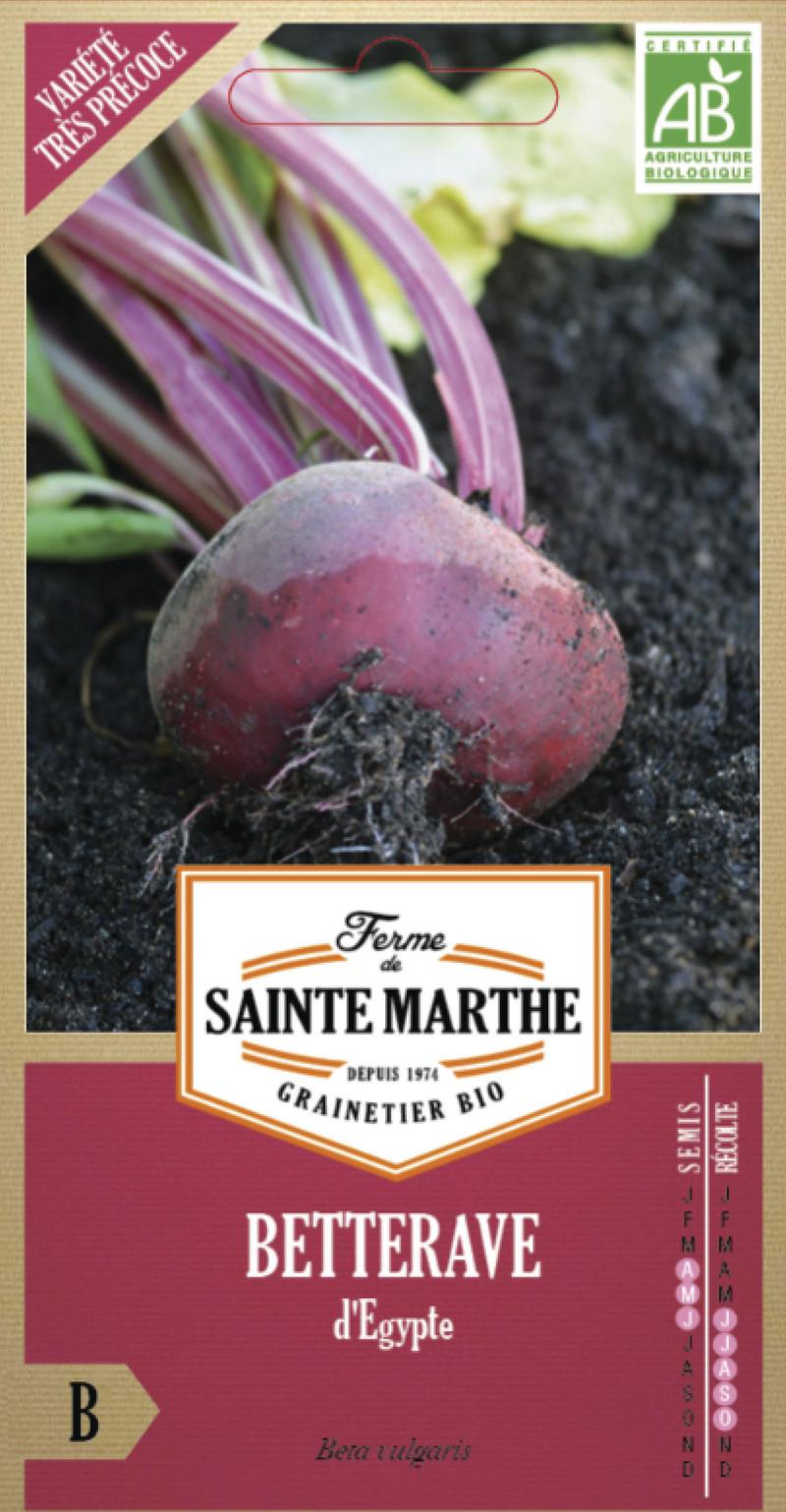 betterave d'egypte bio ferme de sainte marthe graine semence potager sachet semis - Voir en grand